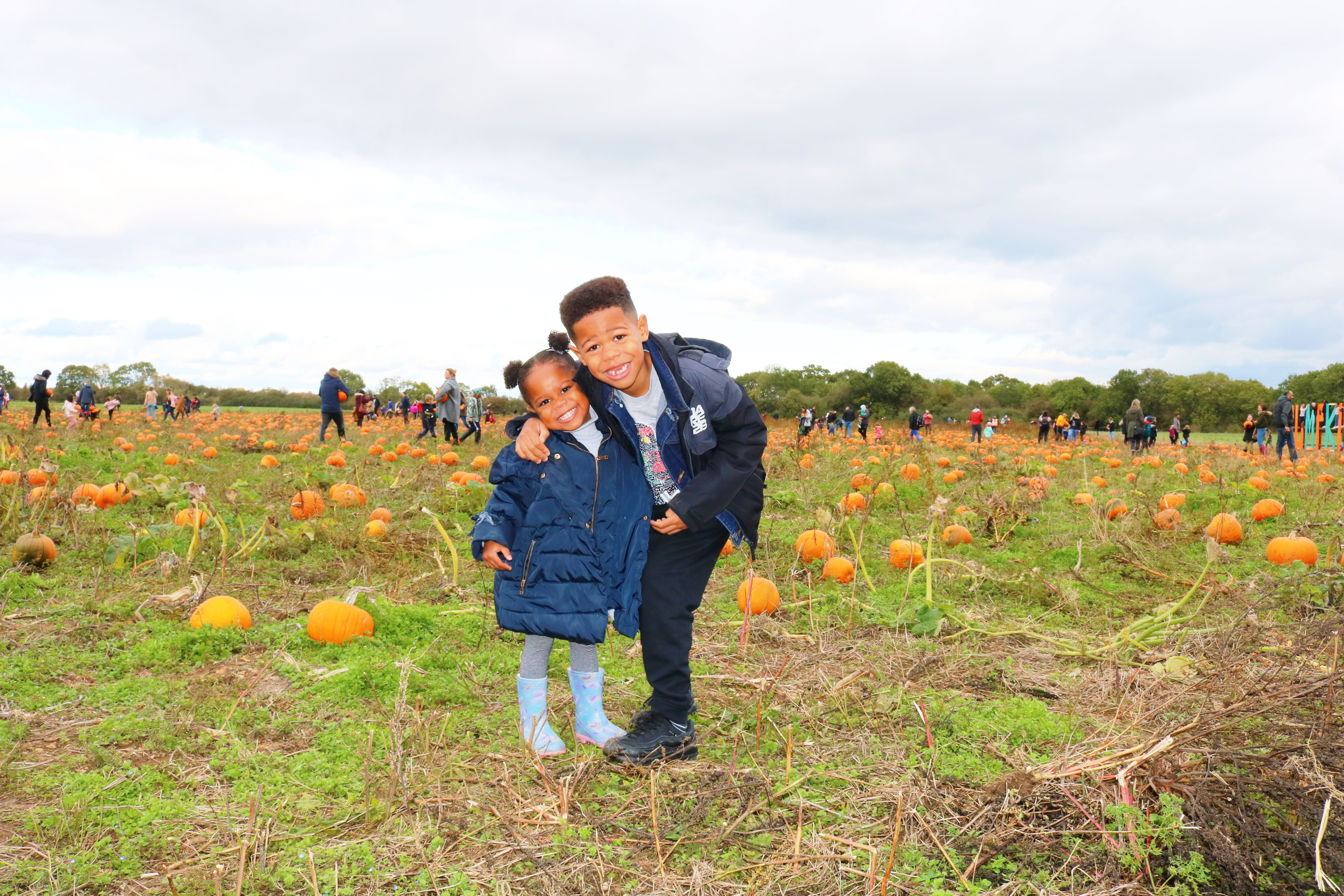 Pumpkin Picking | Fun With The Kids At The Pumpkin Patch MK